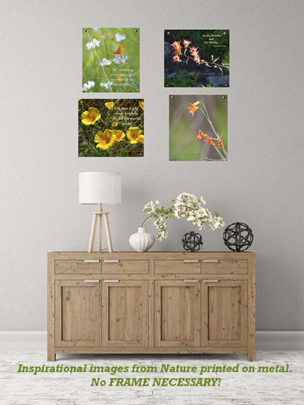 Metal prints in wall display